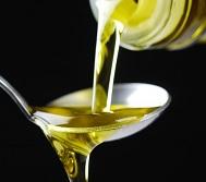 Extra Lucca, il trionfo dei grandi oli d'oliva