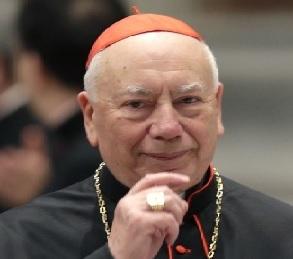 Il pensiero di Papa Francesco, incontro con il Cardinale Coccopalmerio