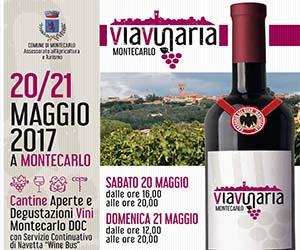 Viavinaria, grande festa nella città del vino