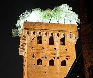 Dalla Torre Guinigi, la sera di Ferragosto, il suono dolce di un violino scende su Lucca